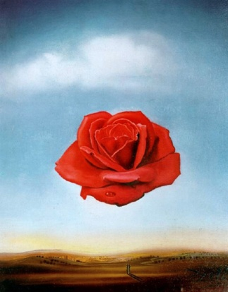 dali-the-meditative-rose